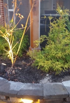 Global Landscaping Service Myrtle Beach 12 2017 (7)