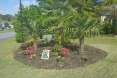 gallery elite coastal landscaping myrtle beach (10)