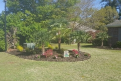 gallery elite coastal landscaping myrtle beach (15)