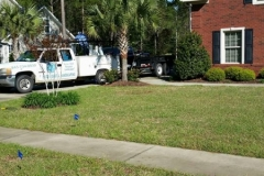 gallery elite coastal landscaping myrtle beach (9)