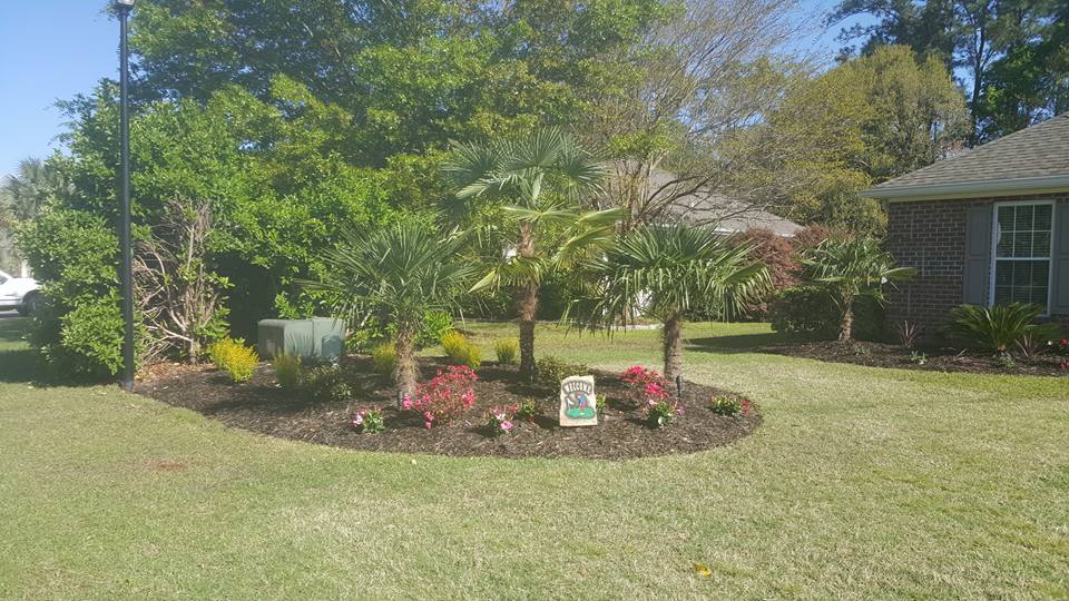 Landscaping Maintenance by Elite Coastal Landscaping Myrtle Beach